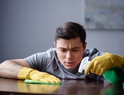 Our Melbourne cleaners share 4 ways to eliminate dust in your home