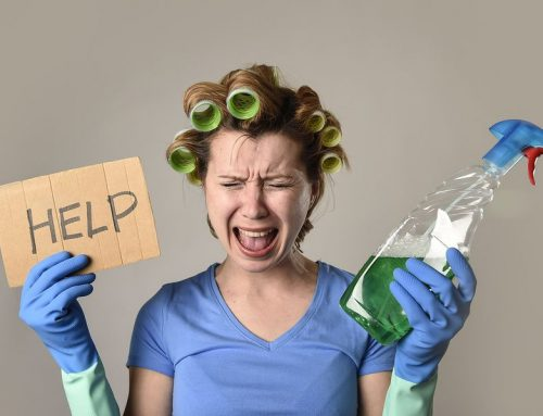 How often should a professional home cleaner in Melbourne clean your home?